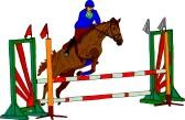 springen paarden